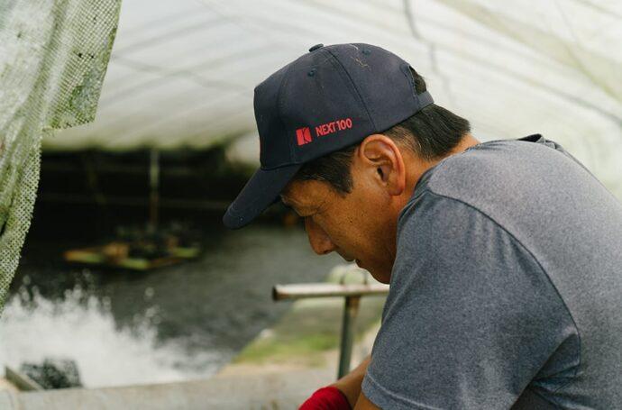 経験豊富なスタッフが鰻の生育具合を見守ります